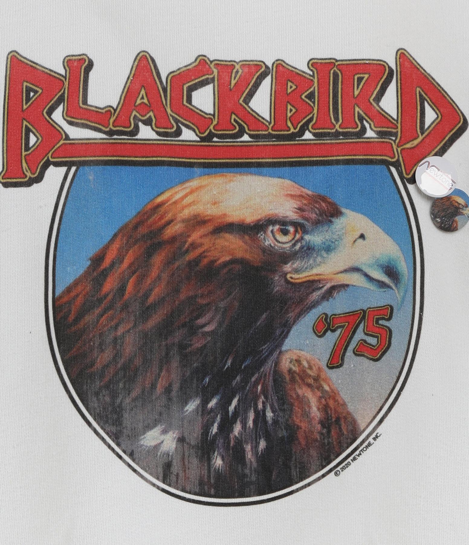 NEWTONE - Sweatshirt Roller Blackbird Coton Beige
