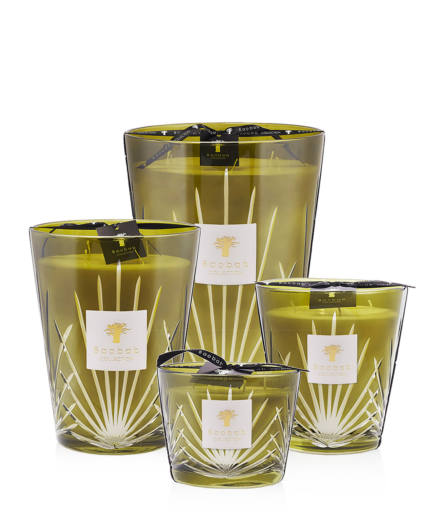 BAOBAB COLLECTION - Bougie Max 24 Palm Springs